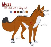 Idess Reference Sheet 2008 by Idess