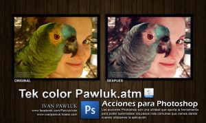 Tek color Pawluk by ipawluk