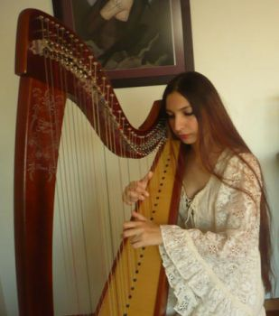 Celtic Harp Stock 1 by Harpist-Stock