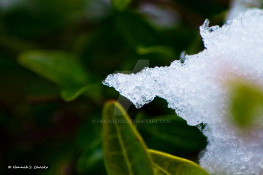 Ice by HSChacko