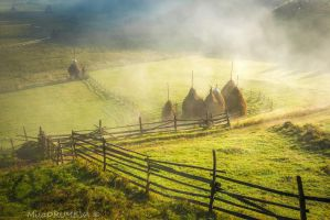 Carpathian morning by Zelma1