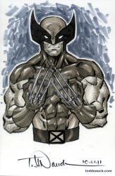 Wolverine 1980s Grayscale by ToddNauck