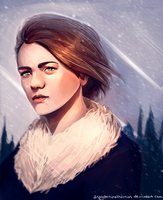 Arya Stark by AragornArathornion