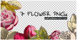 7_flower_pngs_by_vers by vvvers