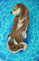 YCH Into the water: Wolf-SiSi by HikariSilverEye