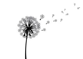 Scattered Dandelion Silhouette by superawesomevectors