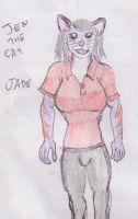 Jen the cat colour now called Jade by WhippetWild