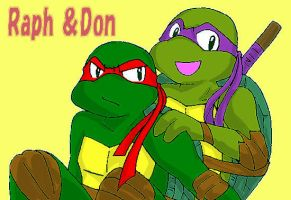 Request2 NT-Raph and NT-Don by koju327