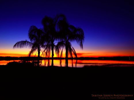 Florida Sunset by TabithaS-Photography