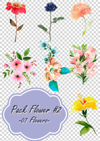 pack flower #02 by andreakaisoo