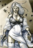 Silver Sable PSC by RichardCox