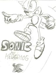 Sonic X style Sonic by Joshtrip1