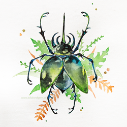 Beetle by Lambidy