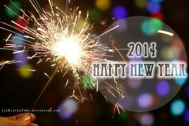 happy new year 2014 by ElaynaTeos
