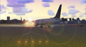 Continental Airlines by AWanderingDryad