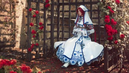 TRINITY BLOOD: Red roses by MiraMarta