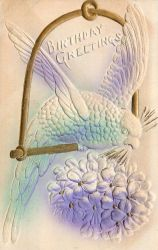 Parakeet With Violets by Yesterdays-Paper