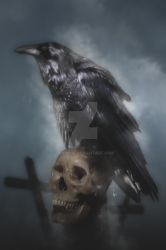 NEVERMORE by HerrNox