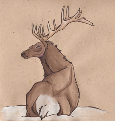 Elk by Hyourin