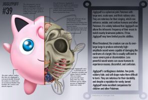Jigglypuff Anatomy- Pokedex Entry by Christopher-Stoll