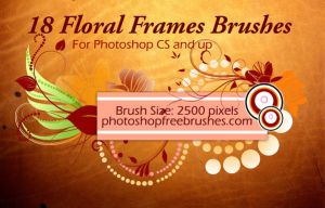 18 Floral Frame PS Brushes by fiftyfivepixels