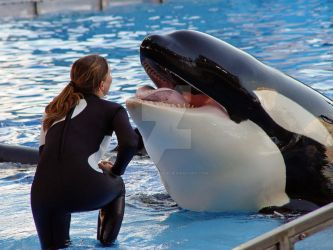Shamu's laughter by shutterbabe2006