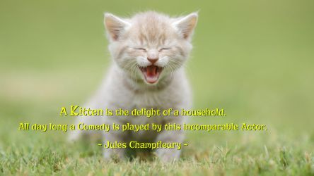 Jules Champfleury Quote by RSeer