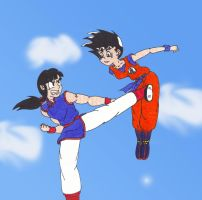 ChiChi vs Goku by starrdust411