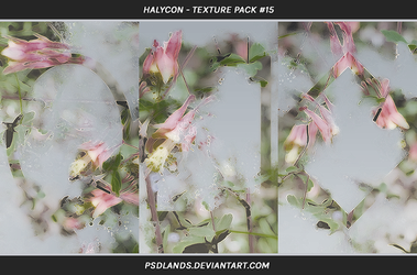 TEXTURE PACK #15 - halycon by psdlands