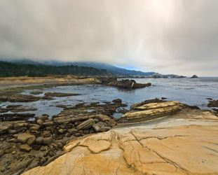Point Lobos 0960 by hfpierson