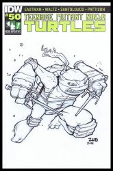 TMNT 100 Hero Initiative Sketch Cover by Zubby