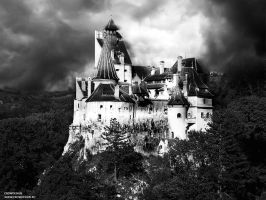 Bran Castle Romania by dpaulo