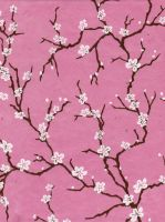 white blossoms on pink - free to use by amberwillow