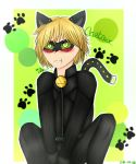 Chatnoir by wolfdrawing2