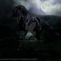 Midnight Horse HEE Avatar by DawnRider7