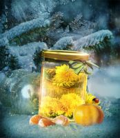 Dandelion Wine_Summer in a glass jar challeng by IgnisFatuusII