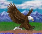 Eagle by rigganmore