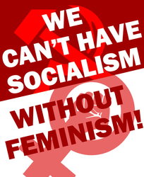 Socialism Needs Feminism by Party9999999