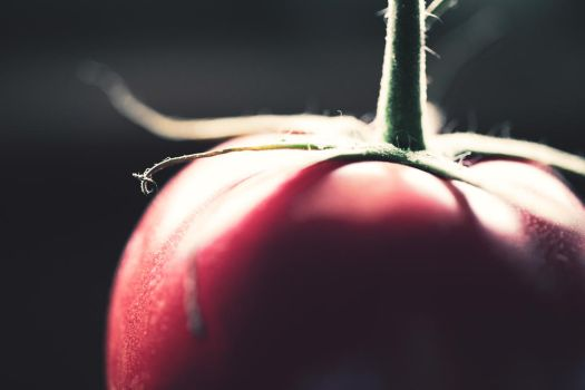 A Tomato a Day... by Leap