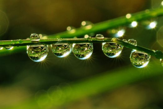 DROPLETS by tomsumartin
