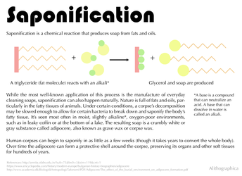 Science Fact Friday: Saponification by Alithographica
