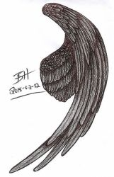 Wing Sketch 2018-02-12 by Blood-Huntress