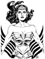 HeroesCon '12 pre-commission: Wonder Woman by mysteryming