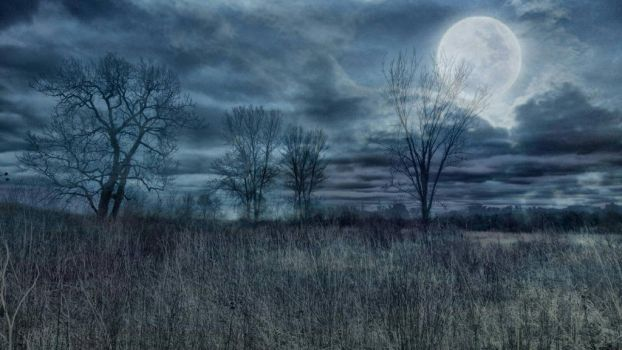 Night Time Moon by ShaunAnarchy