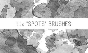 Spots Brushes No.2 by PinkMai