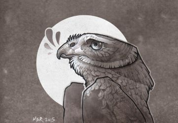 Northern Harrier Blues by Radioactive-Insanity