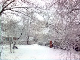 Snow-covered trees 3 by ZoRRoArk
