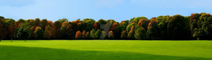 Colors of Autumn by gathrawn82