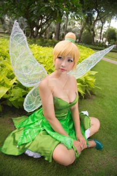 Disney - Peter Pan - Tinker Bell by MonicaWos