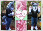 Matt The Wusky! by Kawaii-fur-costumes
